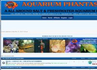AQUARIUM PHANTASIES