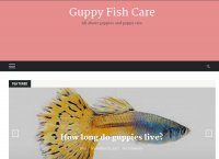Guppy Fish Care