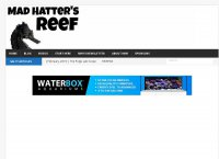 Mad Hatters Reef