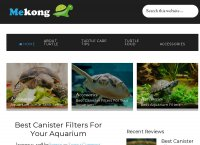 The best Pet Turtle Care information for your Pet Turtle
