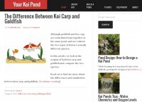 Your Koi Pond - How to build a koi pond and care for koi carp